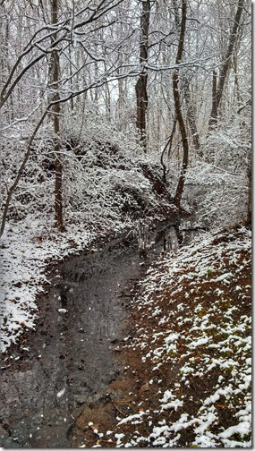 Snow 02 (10)