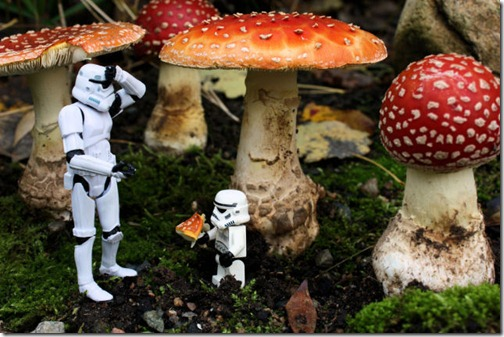 stormtroopers_adventures_part_640_35