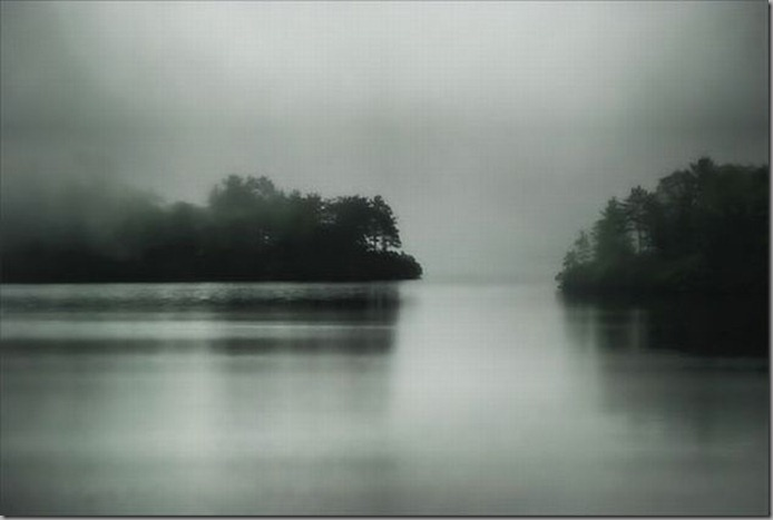 Splendid-foggy-photographs17