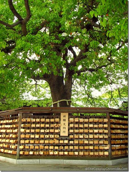 Japan May 2011 193