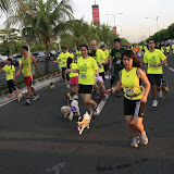 Pet Express Doggie Run 2012 Philippines. Jpg (74).JPG