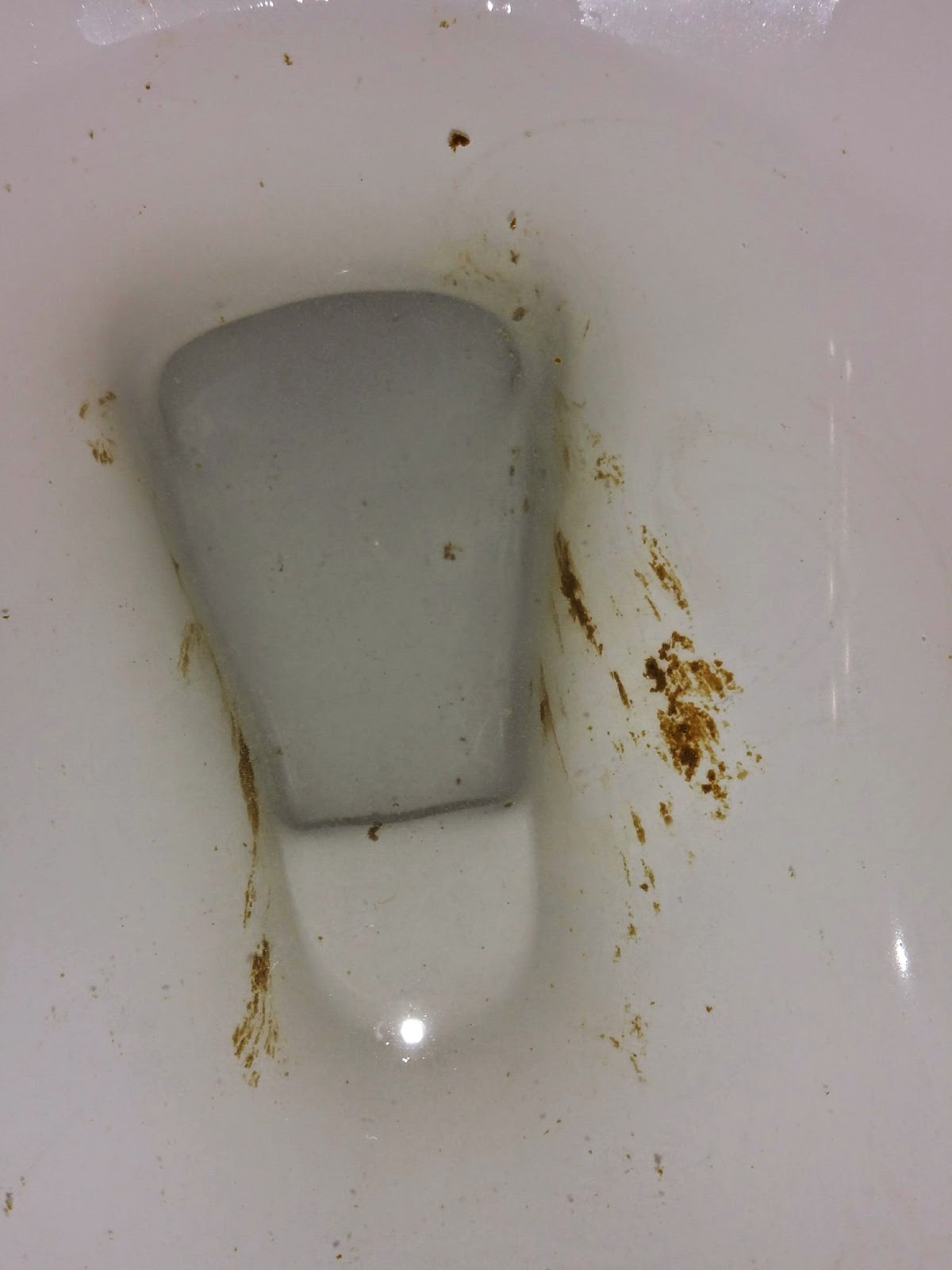 My Daily Poo February 2015