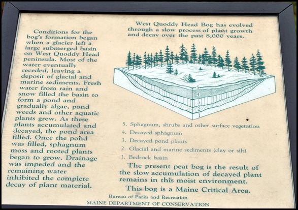04w6 -  Hike - The Bog Boardwalk Signage