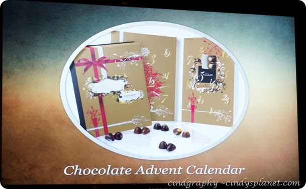 AsterSpring Advent Calendar13
