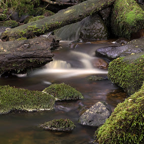 Stream by Mike Hawkwind - Novices Only Landscapes ( water, scotland, uk, muiravonside, places, rivers, landscape, river )
