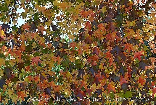 4  Glória Ishizaka - Folhas de Outono 2013