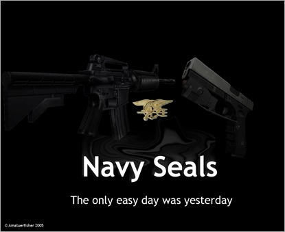 Navy_Seals_by_amatuerfisher