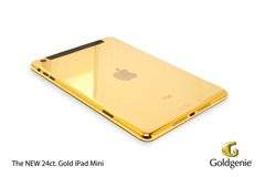 Goldgenie Mini iPad v2