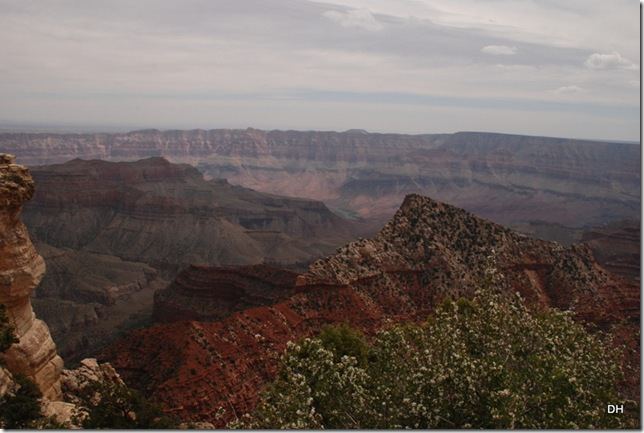 05-17-13 B Grand Canyon North Rim Drive (218)