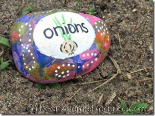 garden marker onions