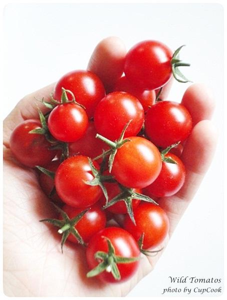 tomato (9)
