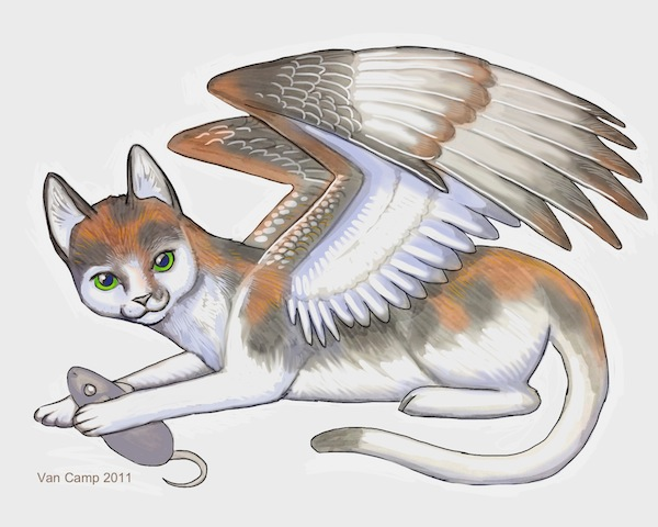 AngelcatFFB
