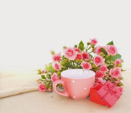 roses rosas