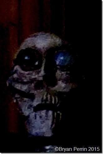 oracular Head Ancient Wise