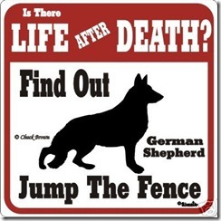 german-shepherd-funny-warning-sign-many-breeds-avail_250533691570