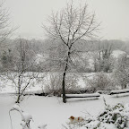 2012-02-01 (6).jpg
