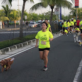 Pet Express Doggie Run 2012 Philippines. Jpg (66).JPG