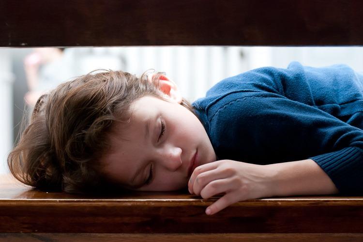 Abby sleeping at the table blog-2