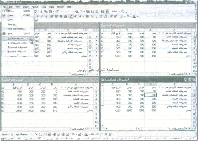 excel_for_accounting-164_06