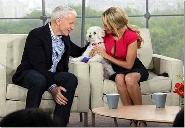 Cachorro cego abandonado encontrou uma nova familia (21)
