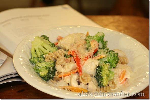 chicken_broccoli_red_pepper_rotini (4)