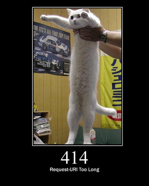 HTTP-Status-Cats-12