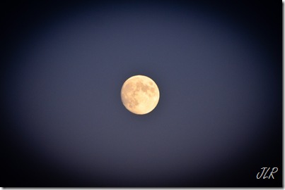 MoonriseAug112011-4304