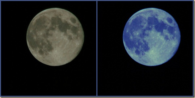 Blue Moon Collage