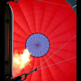 Up and Away by Natalie Woodhead - Transportation Other ( hot air balloon, red, balloons, balloon,  )