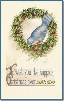 Christmas Bluebird