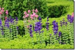 nybg-new-york-botanic-gardens-bronx-005