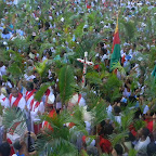Domingo de Ramos 2013