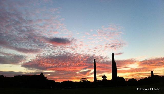 Sydney Park sunset (4)