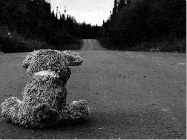 road-sad-teddy-bear-17347