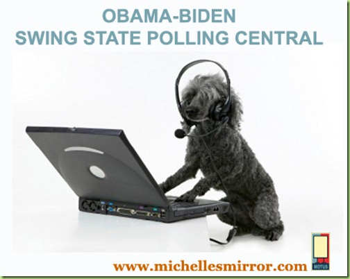 OBAMA-BIDEN POLL copy