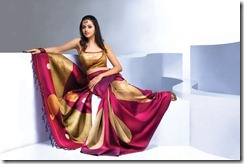 bhavana hot in saree pics