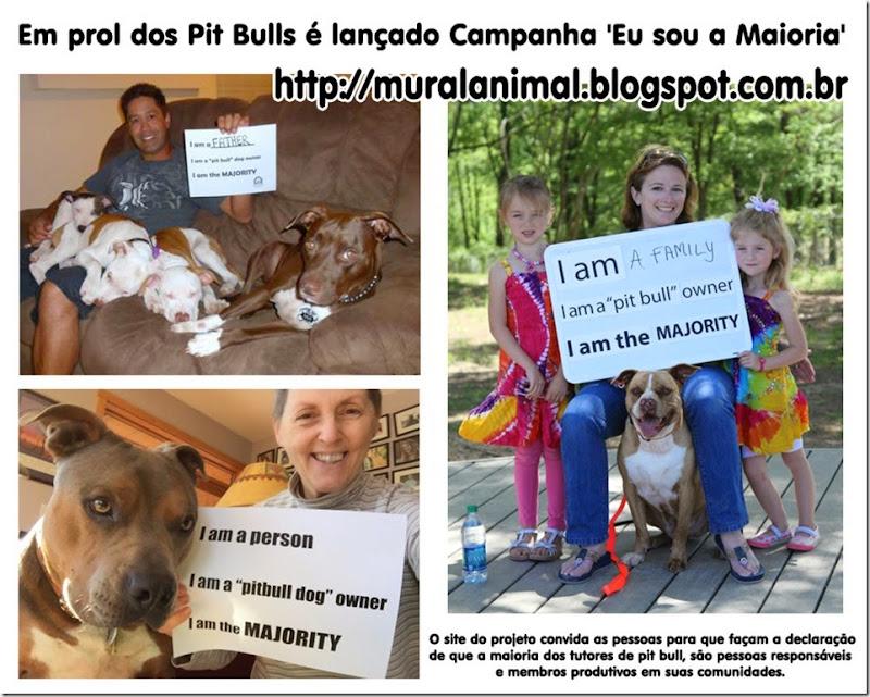 pitbull_maioria
