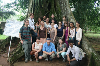 'Class photo at the Strangler Ficus Tree at Aburi Botanical Garden.' Photo by Sandra Vu
