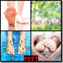 FEET- 4 Pics 1 Word Answers 3 Letters