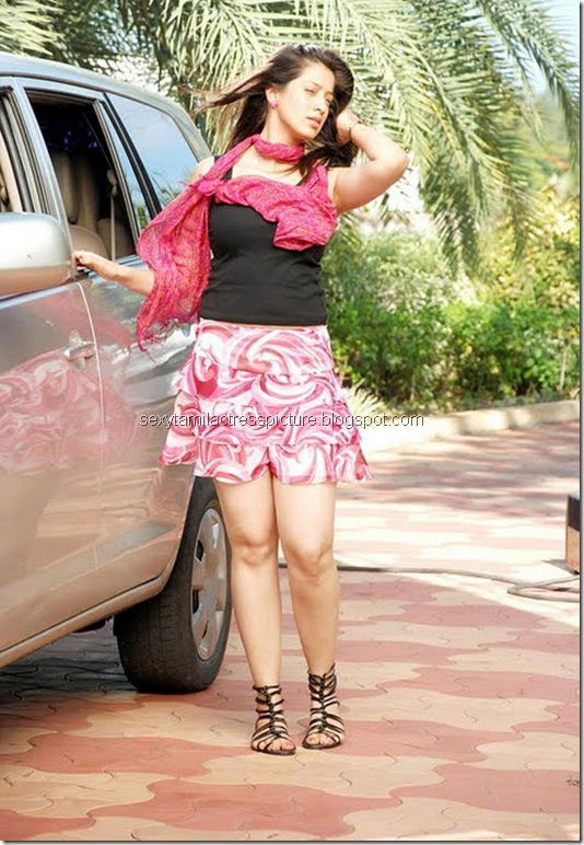 hot_lakshmi-raisexy_stills