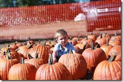 Pumpkin Patch Oct. 2011 023