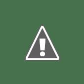 Nejpořádnější členka tábora - Kivi (uklízečka, uklízečka...)