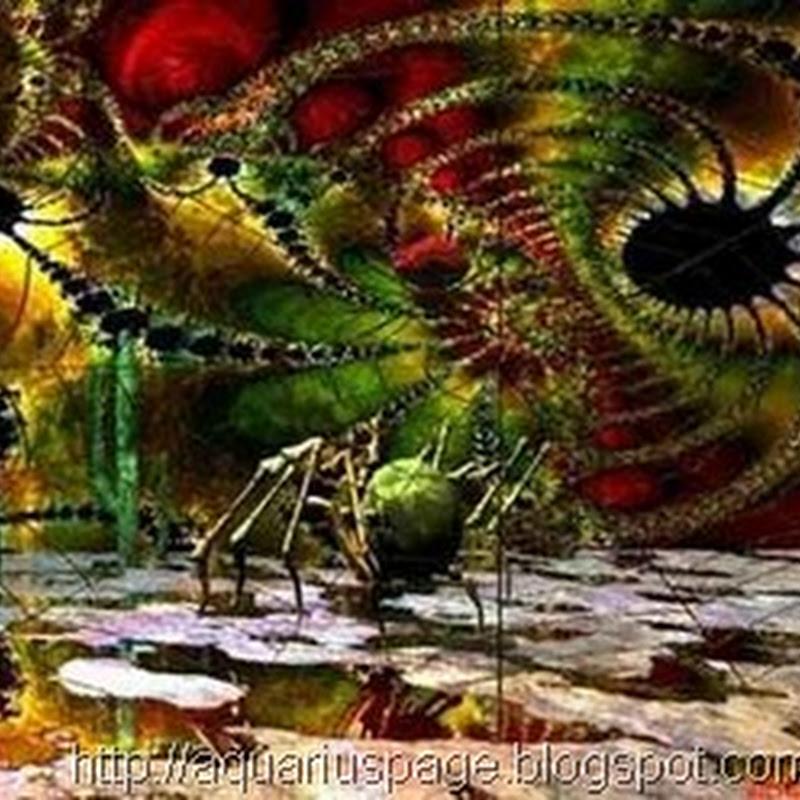 Larvas Astrais ou Formas – Pensamentos Miasmas