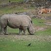 zoo_kolmarden_8908.jpg