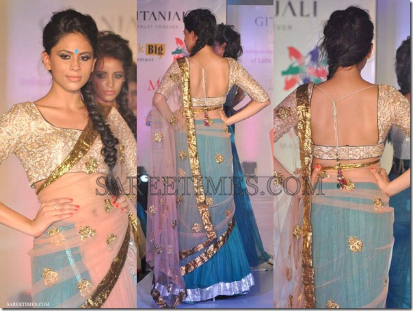 Manali_Jagtap_Embroidery_Shimmer_Saree