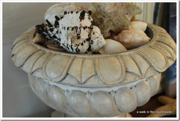 seashells in urn for coastal touch