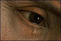 les plus belles larmes de la peinture la reprsentation des larmes dans la peinture est un sujet empli dmotions qui touche au cur