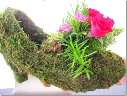 rose on a moss shoe