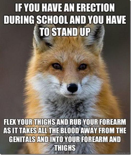 fox-facts-meme-2