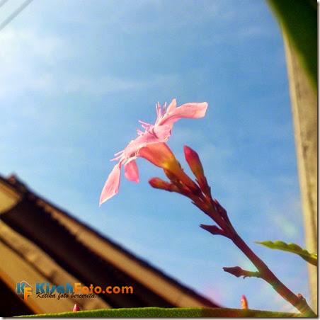 Jepret Kisah Fotoi_03
